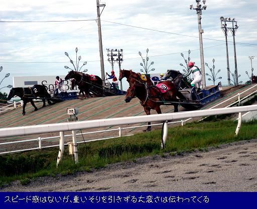 ばんえい競馬.JPG